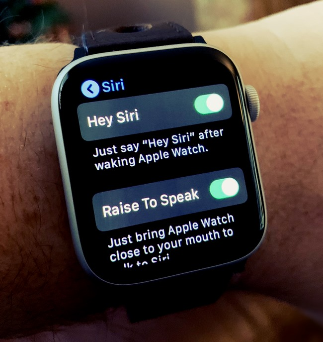 raise to talk apple watch iPhone Settings