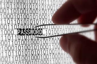 steal passwords