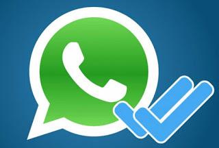 Check Whatsapp