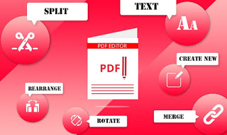 Editable PDF